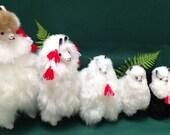 Alpaca Family