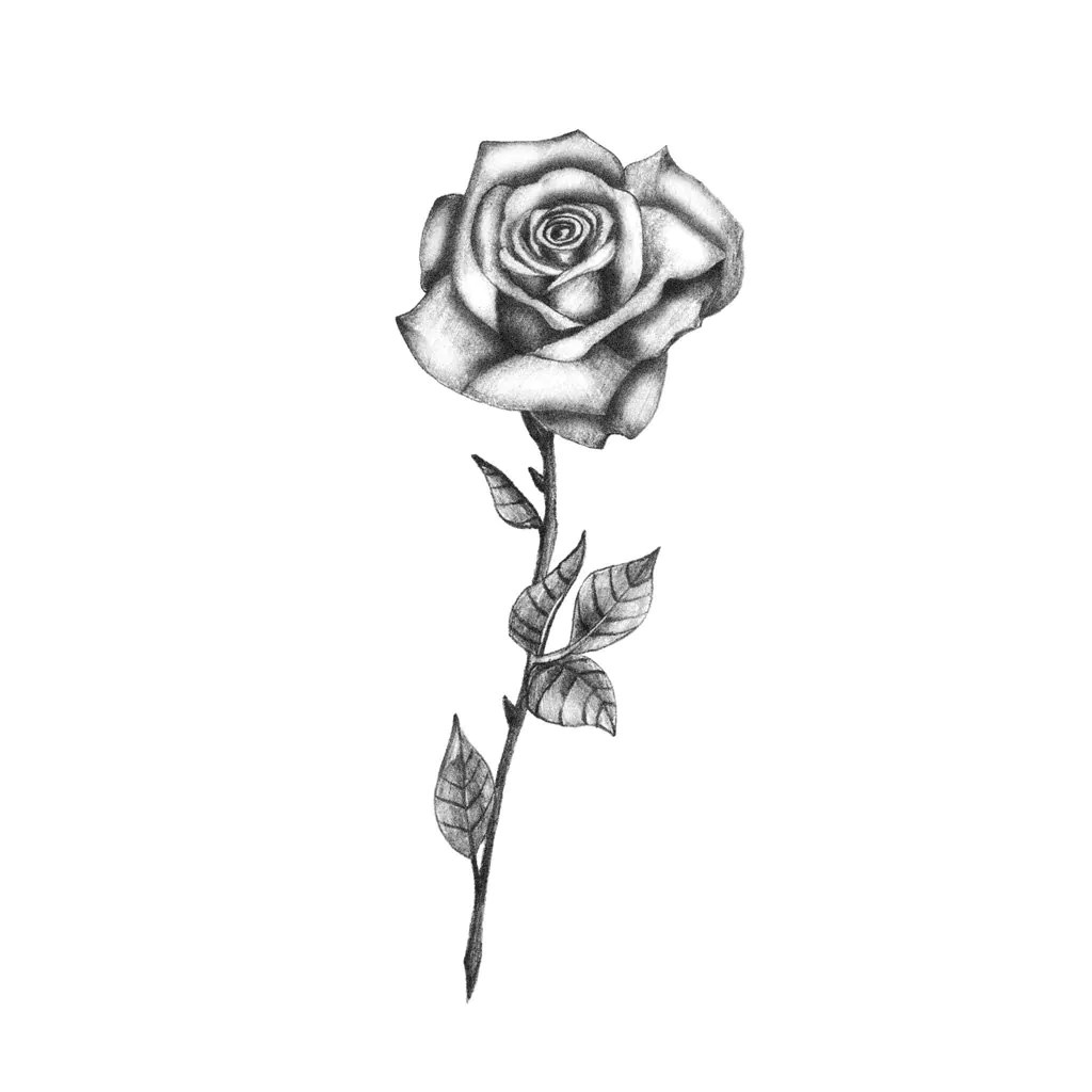 Zarte B Amp W Rose Temporare Tattoo Temporares Tattoo Rose