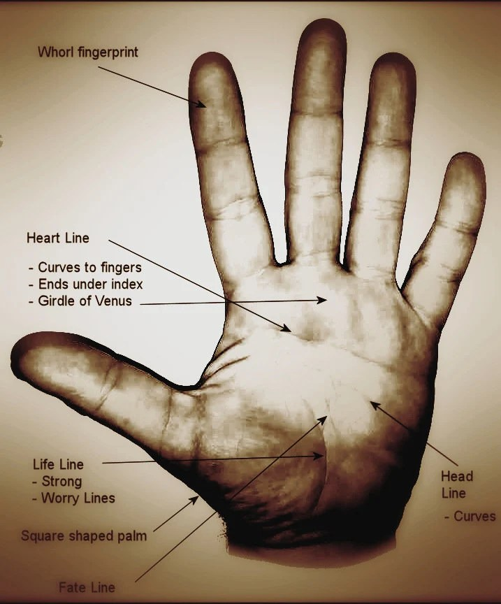 Easy Palm Reading for Entertainers