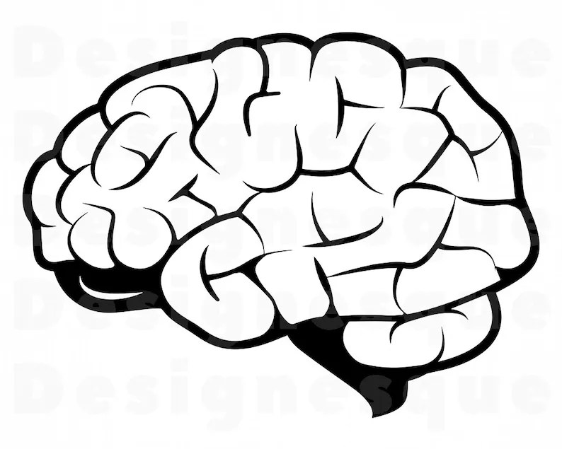 Brain 2 SVG Brain Svg Brain Clipart Brain Files For