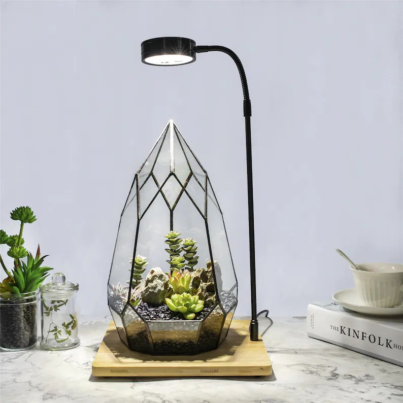 NCYP Tabletop Natural  Wood Board LED Succulents Grow Light image 0
