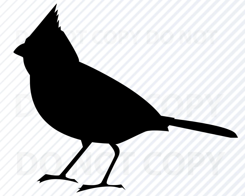 Cardinal Svg Files Cardinal Vector Image Clipart Birds Svg