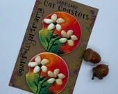 Custom Car Coasters - Kauai Shell Flowers