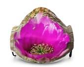 Premium Face Mask - Cactus Blossom