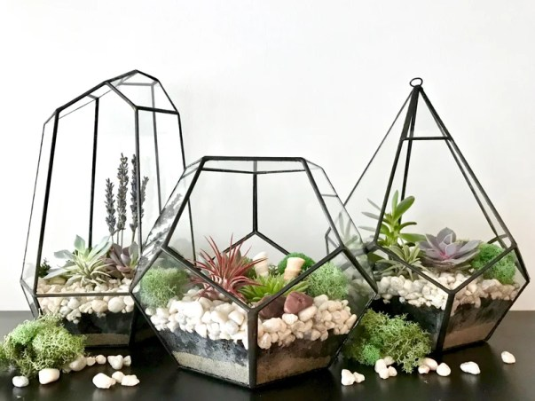 Teardrop Terrarium DIY Kit image 2