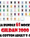 Gildan 2000 Adult T Shirt On White Background Colors 2019 61 Etsy