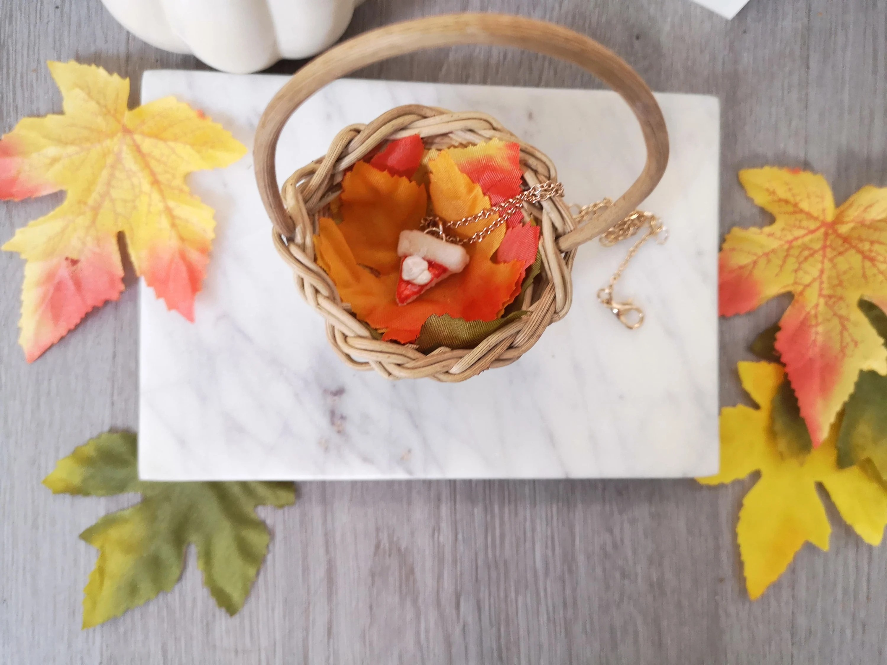 I'd Pick You  Pumpkin Pie Necklace in Mini Harvest image 3