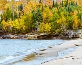 Fall Colored Forest on Water Shoreline
