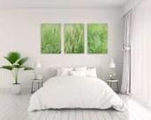 Bild Gräser, Set von 3 Bildern, Landschaftsfotografie, Druck Natur, Wandbild Natur, Bild Wiese, Fotografie Druck, beruhigende Bilder