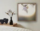 Kirschblüten Bild, Frühling, Fine Art Fotografie, Wandbild Blumen, Druck Blumen, Foto Natur, pastell, Landschaftsbilder, Druck Foto