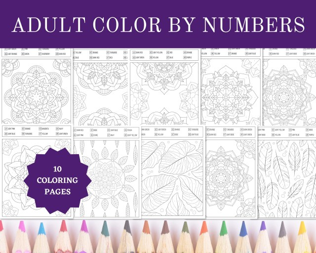 Printable Adult Color By Numbers Coloring Pages  26.26x26 Sheets Digital  Instant PDF Download