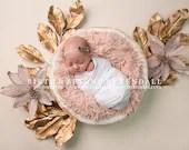 Gold Leaf Newborn Digital Backdrops (3)