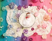 Rainbow Baby Newborn Digital Backdrops (3)