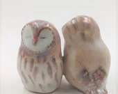 Barn owls - a happy accident