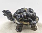 the brown tortoise or turtle I am not judging