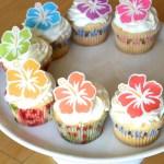 Edible Hawaiian Tropical Hibiscus Flowers Cake Cupcake Toppers Food Decorations