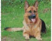 Cross stitch german shepard dog pdf pattern