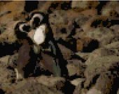 Cross stitch penguins kissing pdf pattern