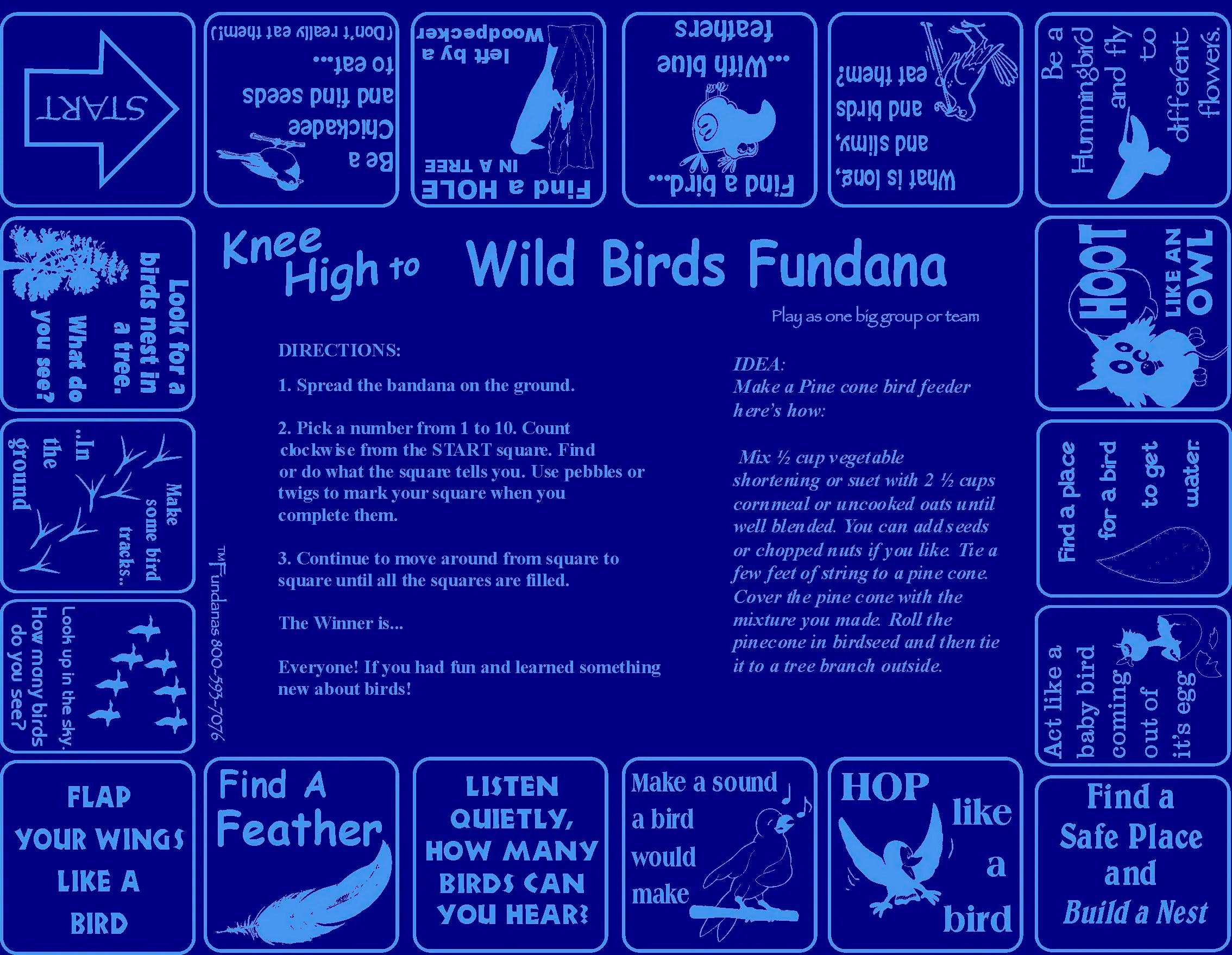 Birds Backyard Scavenger Hunt Game About Birds For Kids
