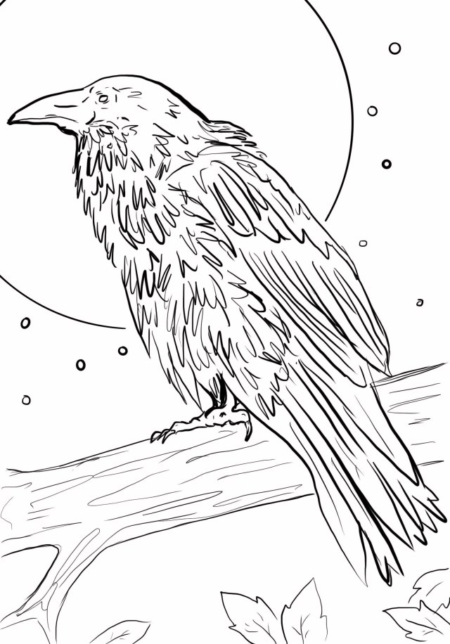 Moonlit Raven Download Printable Coloring Page Downloadable Halloween Party  Children Goth Art Spooky