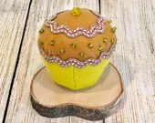 Cuocake pin cushion...