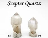 Scepter Quartz crystal point natural raw rough stone