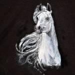 Hand Painted Black Shirt White Horse White Horse Sale Free Sh In Usa Only Original Art Work By Indigo Blu Size Medium 38 40