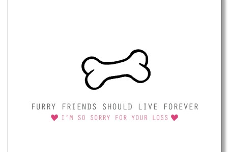sorry for your loss dog full hd maps locations another world