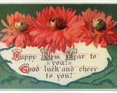 Antique Embossed Happy New Year Good Luck Cheer Greetings Postcard Large Red Pink Flowers Peonies Mums 1900s 1910 by HIR Boston