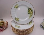 Vintage Paragon English Bone China Yellow Flower Salad Plate 12 Available