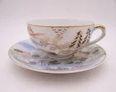 Vintage Colorful Japanese Teacup and Saucer Tea Cup Set