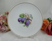 """1960s Hutschenreuther Fruit Salad Plate """"Plum"""" Lovely"""
