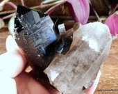 Black Quartz, Smoky Quartz Crystal Cluster, Quartz Crystal Quartz Point ~1712