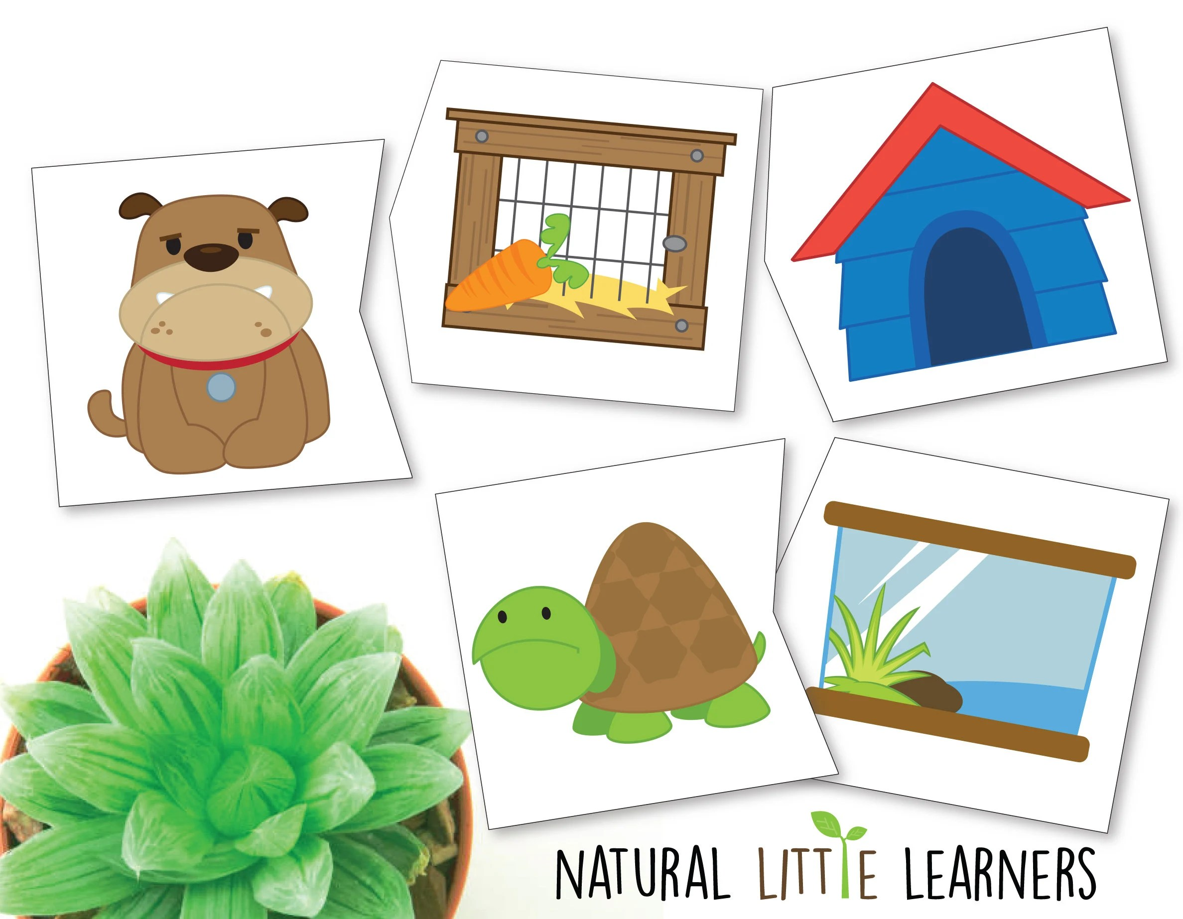 Pet Home Matching Puzzle Matching Game Preschool Learning