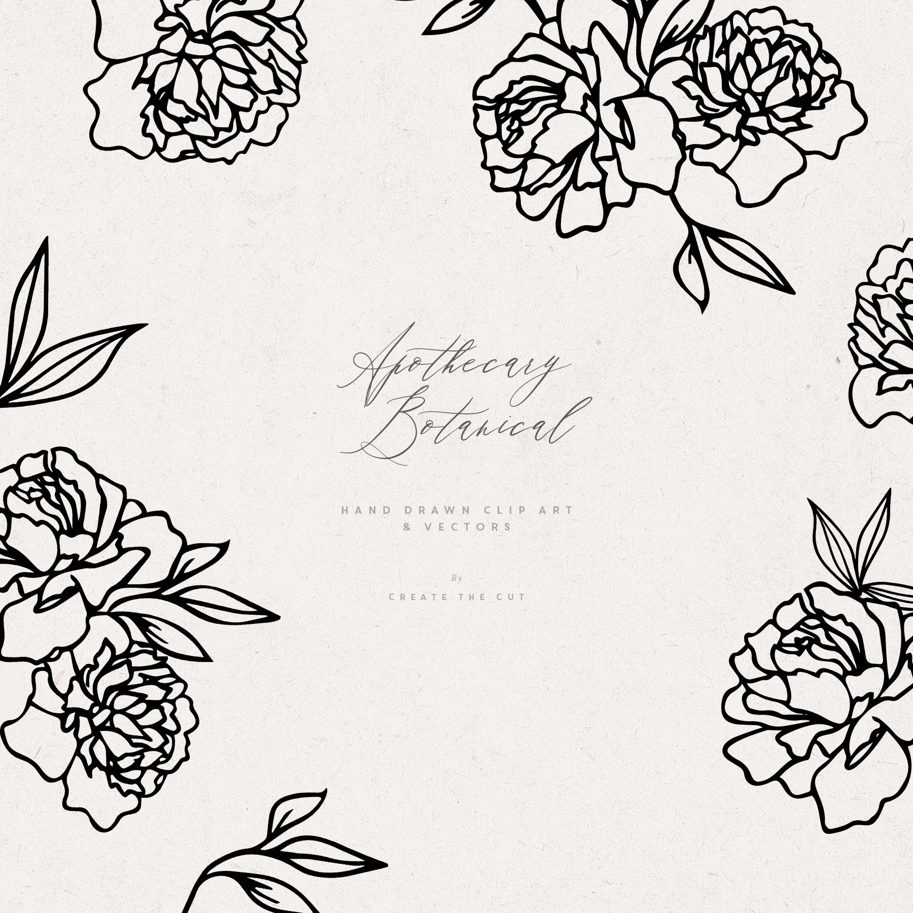 Apothecary Botanical Line Clip Art And Vectors