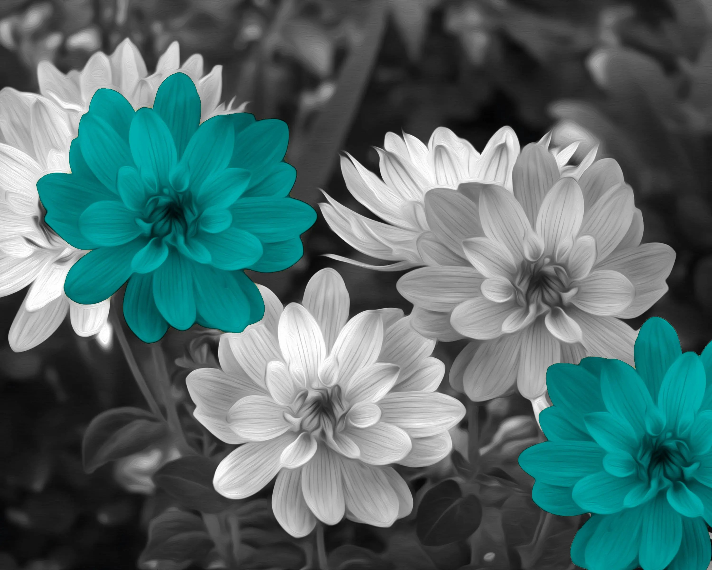 Teal flowers   Etsy Black White Teal Wall Decor  Teal Flower Decor  Teal Gray Home Decor Wall  Art Picture