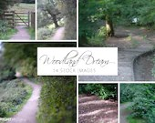 Woodland Dream Photo Set, 4000px by 3000px, instant stock photo download