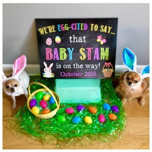 Annoncer sa grossesse à Pâques à l'aide de ses chiens | A découvrir sur le blog : babyshowercreative.com