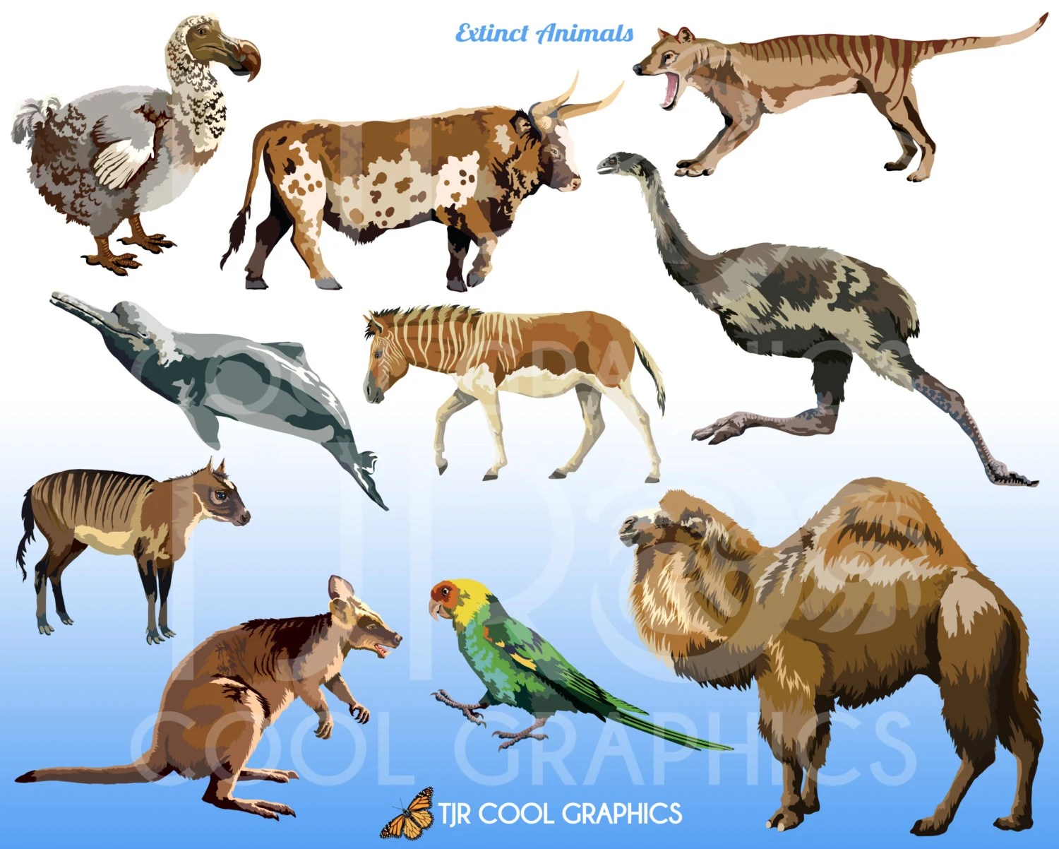 Extinct Animals Digital Realistic Clip Art Commercial PNG   Etsy image 0