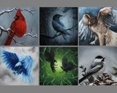 "4x4"" Magnet Bird Birds Ornithology Raven Crow Eagle Hawk Cardinal Woodpecker Art Print Refrigerator Thin Flat Square Magnet"