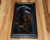 "6x12"" Original Oil Painting - Dark Hawk Brown Blue Night Bird of Prey Birds Ornithology - Animal Wall Art"