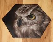 "5-6"" Original Mini Oil Painting Hexagon Flat Panel - Brown White Owl Bird Animals Animal  - Small Canvas Wall Art"