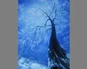 "Art PRINT - Frozen Blue Winter Treetops Enchanted Forest Trees -  Landscape Wall Art - Choose Size 4x6"" 5x7"" 8x10"" 12x16"" PRINTS"