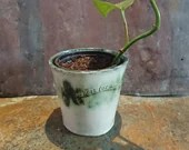 Ceramic plant pot - handmade - life is too short for magnolia - planter - indoor plant - poetry