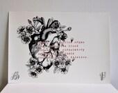 A3 Anatomical Heart Drawi...