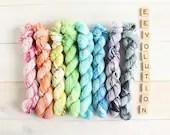 Indie dyed yarn Eevolutio...