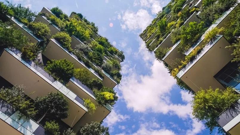 Gros plan sur la végétation de la forêt verticale.