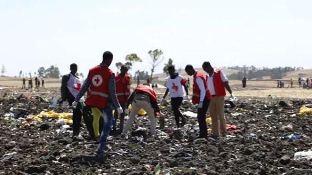 Des membres de la Croix-Rouge participent aux recherches.