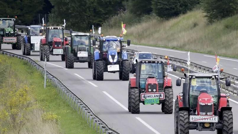 Les manifestants, répondant à l'appel de la FNSEA, premier syndicat agricole, et des Jeunes agriculteurs (JA), participeront à un grand rassemblement place de la Nation, après avoir emprunté le périphérique parisien.