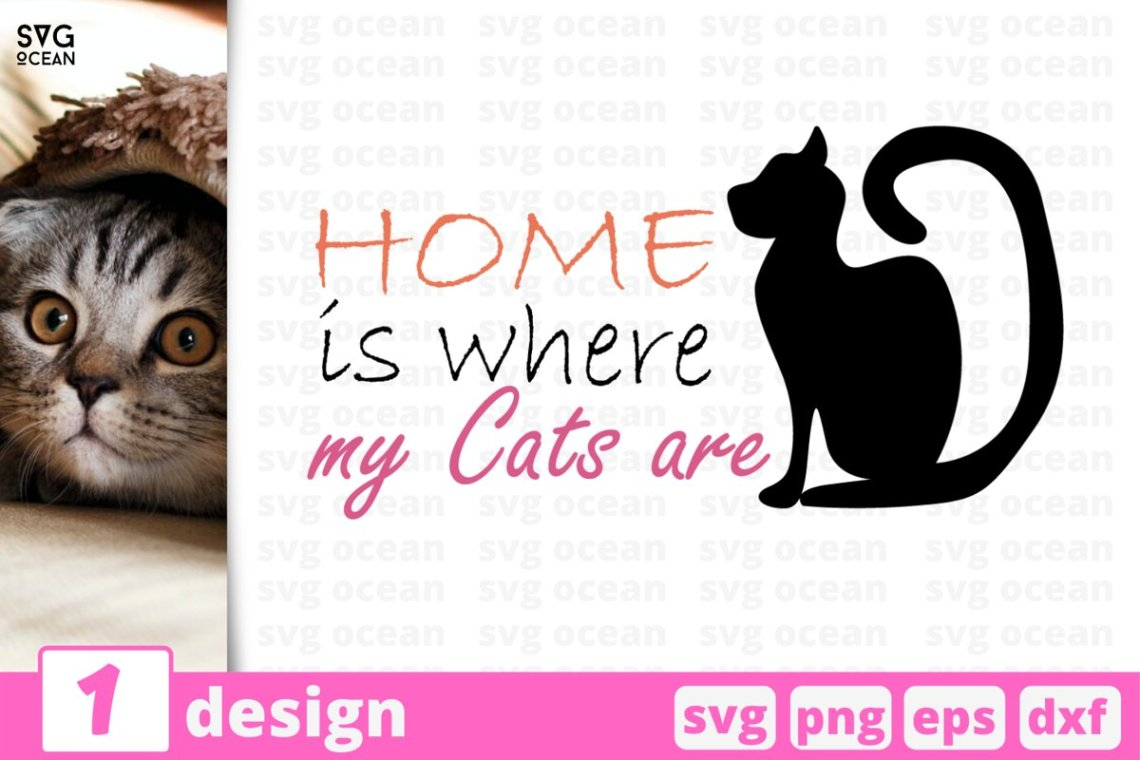 Download HOME IS WHERE MY CATS ARE SVG QUOTE   Cat lover svg   Cat ...